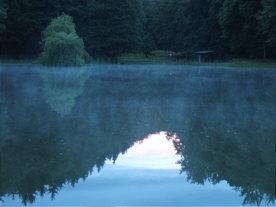 Waldsee dampft