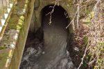 ..., der hier in den Daisbach fließt.