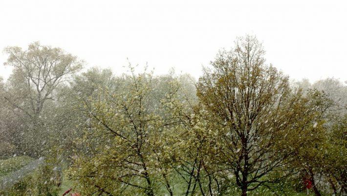 Fröhliches Schneetreiben am 26. April
