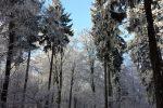 winter-achteck-03