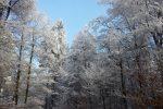 winter-achteck-06