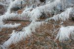 winter-achteck-07