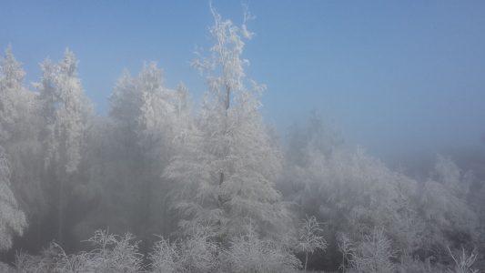 Winter im Theißtal zum Nikolaustag