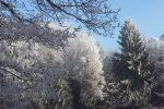 winter-achteck-14